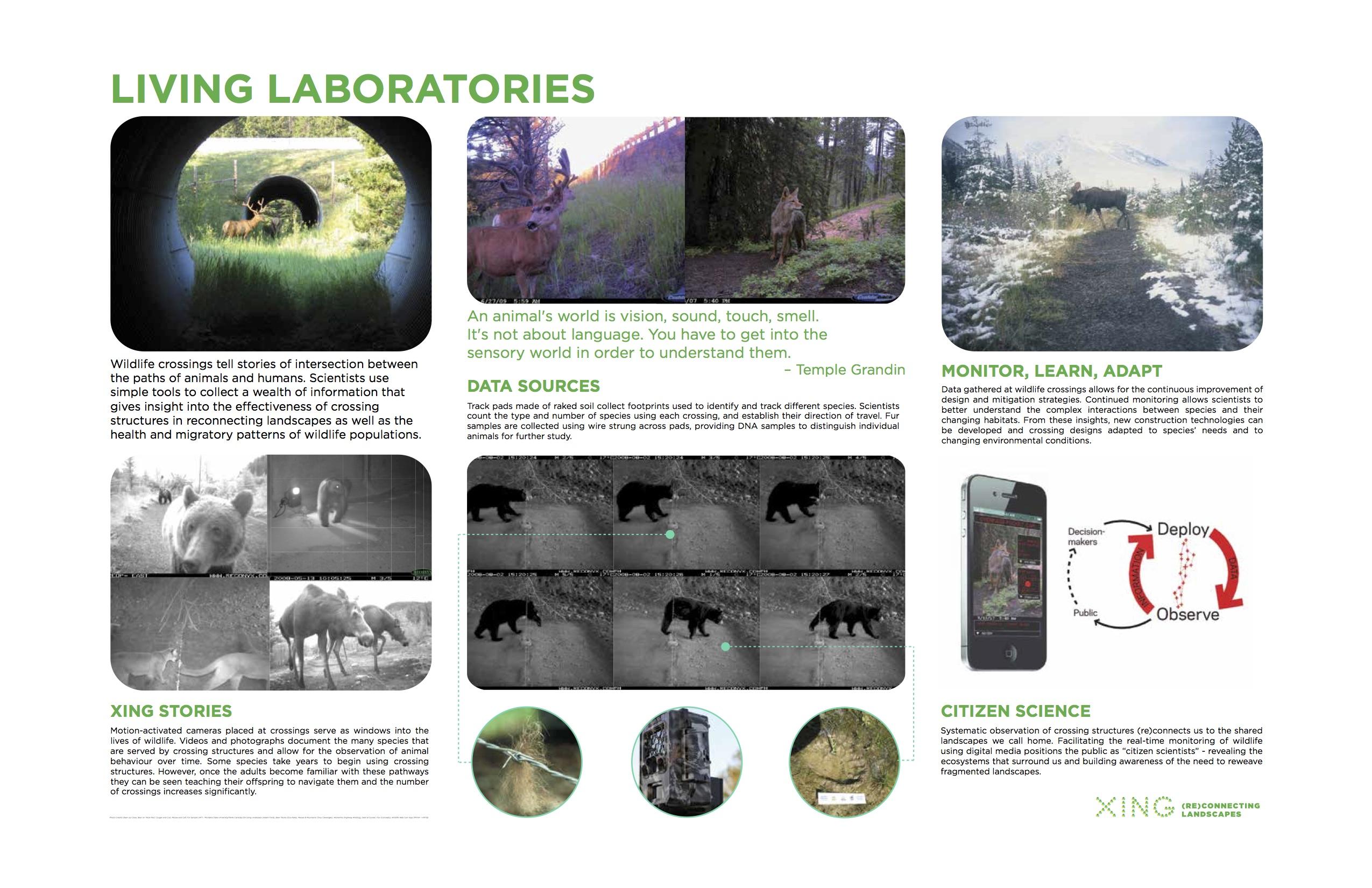 XING Portfolio (Living Labs)